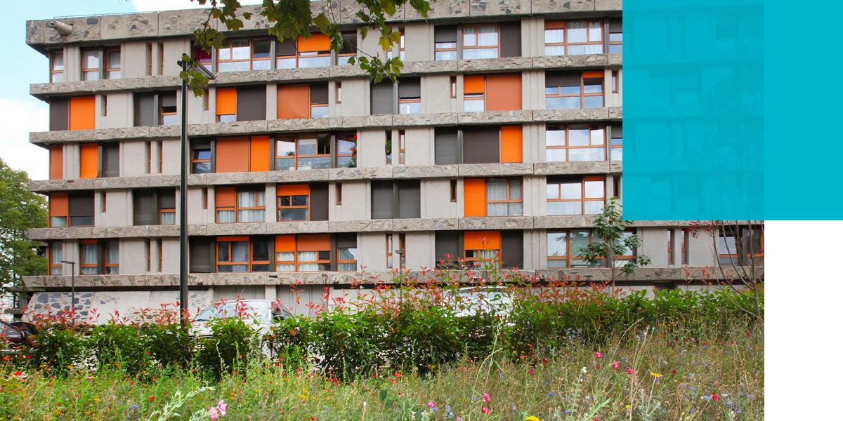 fond-clap-de-fin-pour-le-grand-chantier-de-renovation-urbaine-des-bleuets-a-creteil