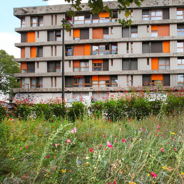 mea-clap-de-fin-pour-le-grand-chantier-de-renovation-urbaine-des-bleuets-a-creteil